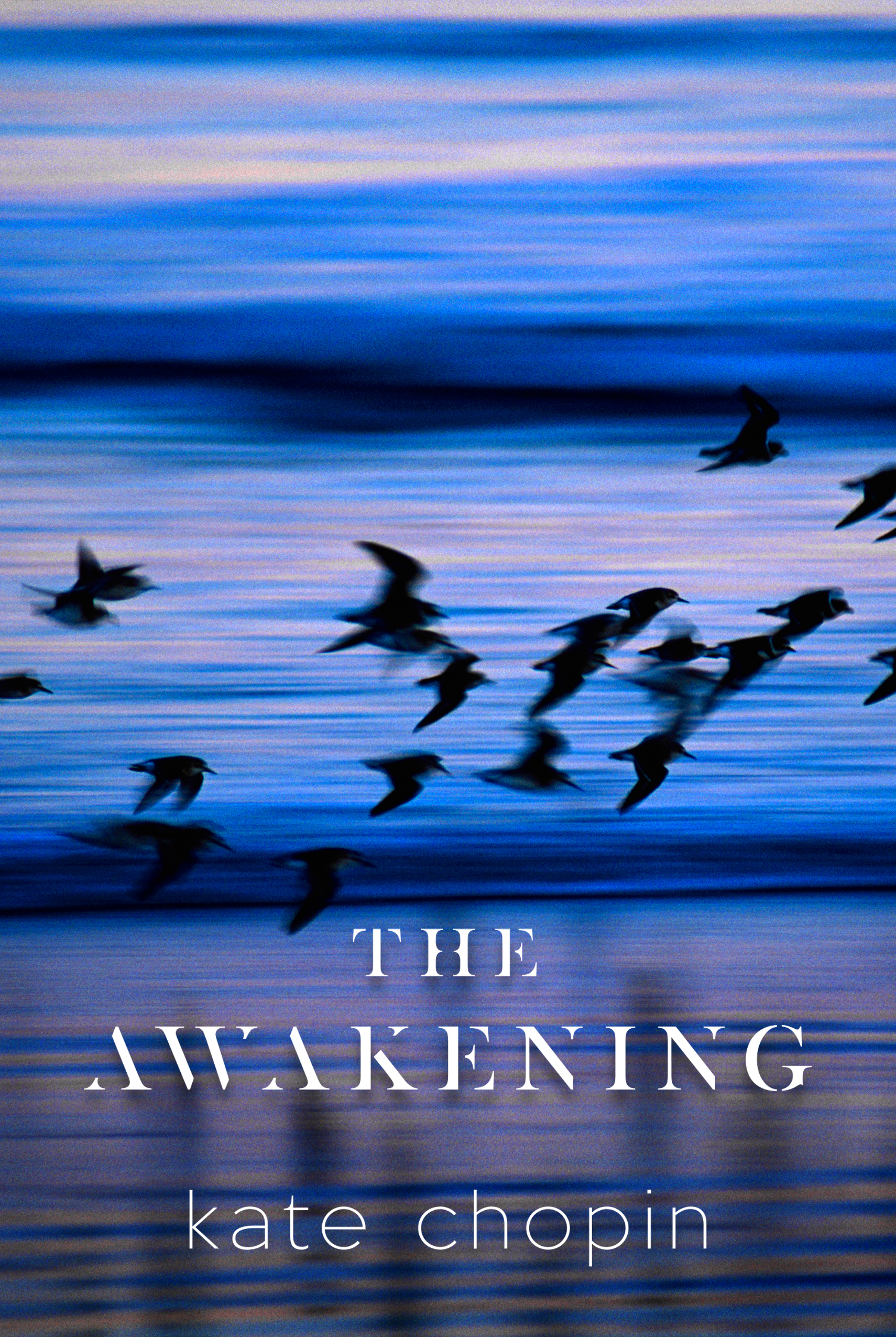an analysis of the awakening a novel by kate chopin - kate chopin's unorthodox awakening the awakening, written by kate chopin, was a book that was truly ahead of its time the author of the book was truly a genius in her right, but yet she was seen as a scoundrel.